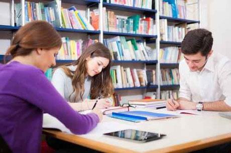 Studium & Fachausbildungen