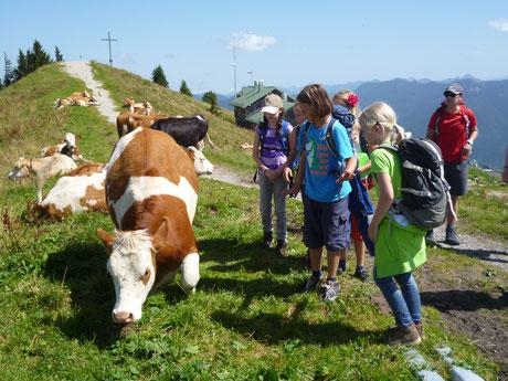 Jugendherberge Lenggries Pauschalprogramme