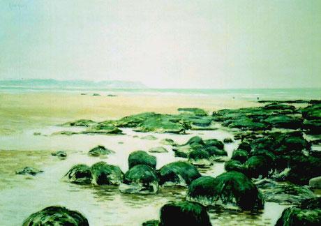 Tourbes fossiles près du Cap Gris-Nez - Fossil Peat near Gris-Nez Cape (Remi Acquin)