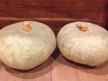 見事なかぼちゃ