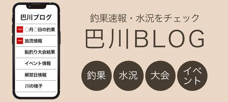 巴川釣果ブログ
