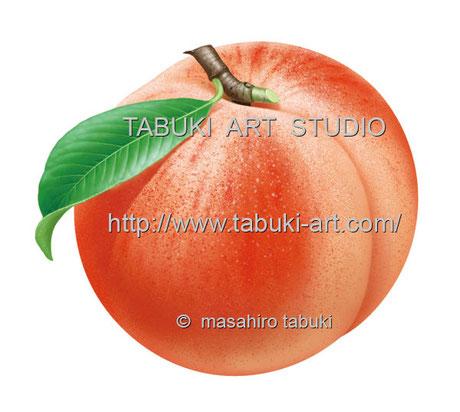 もも 桃 桃 peach ピーチ イラスト パッケージ