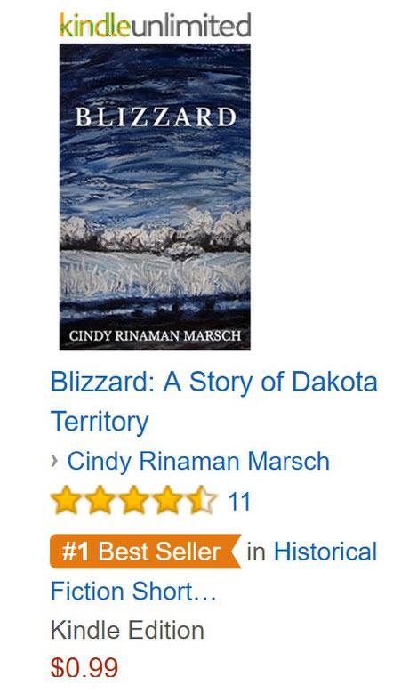 Screen shot of #1 Best Seller ranking on 8-15-16