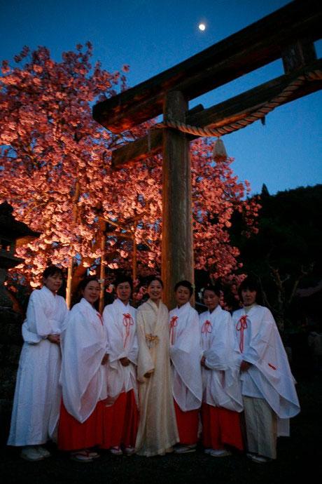 京都黒田 春日神社ご奉納を終えて 百年桜満開の下
