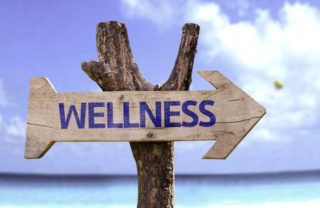 Wellness Zen Zon Zee