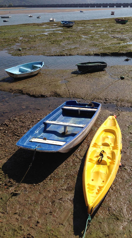 san vicente de la barquera - oyambre - 2014 - Lyzzz
