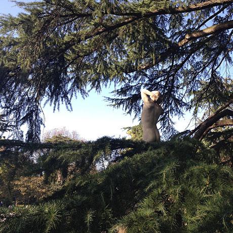 toulouse - jardin du grand rond - 2014 - Lyzzz