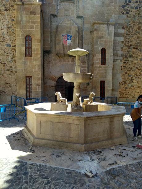 fuente piedra rodaje