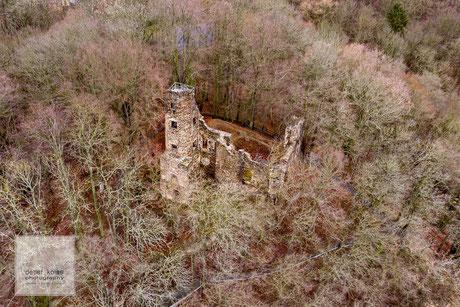 Burgruine Liebau, im Vogtland, im Wald