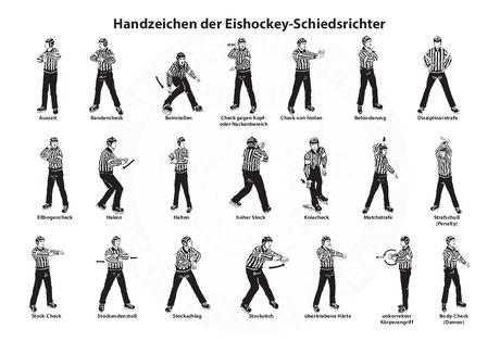 Eishockeyregeln Del