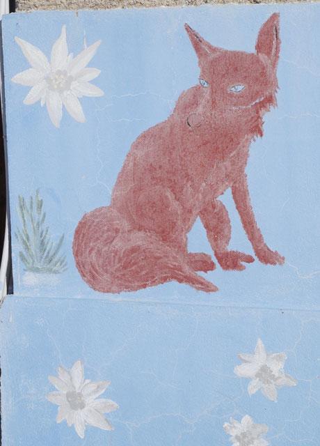 Un renard et encore des edelweiss...
