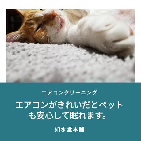 ペットも埃には敏感です。ペットの健康の為にもエアコンクリーニングを定期的にしましょう。