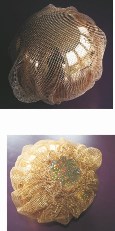 """Eizelle mit Netz für Projekt """"Agenten auf dem Weg"""""""