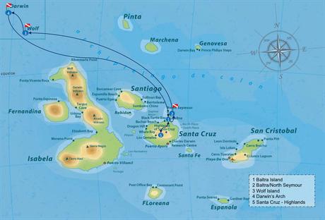 Galapagos Shark Diving - Individual Itinerary