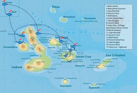 Galapagos Shark Diving - 15 day Galapagos Itinerary