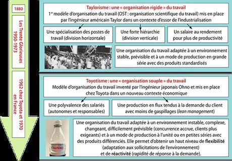 L'évolution de l'organisation du travail - Cliquer pour agrandir