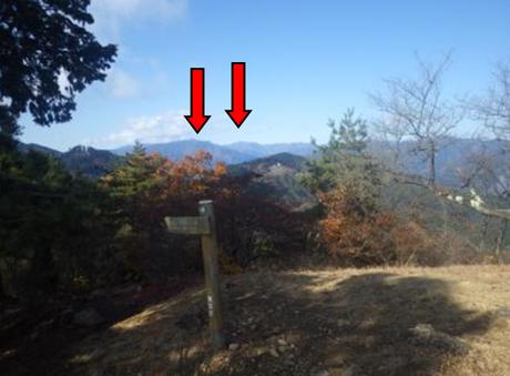 矢印は鷹ノ巣山(左)と雲取山(右)