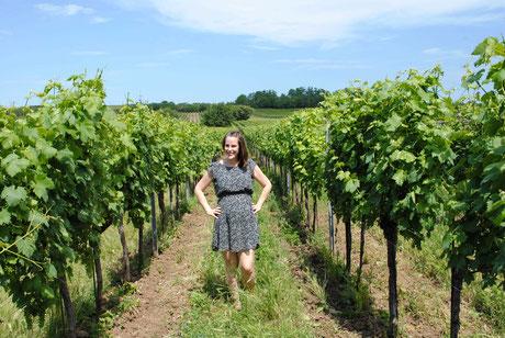 Karin Habersack im Weingarten der Riede Ungerberg