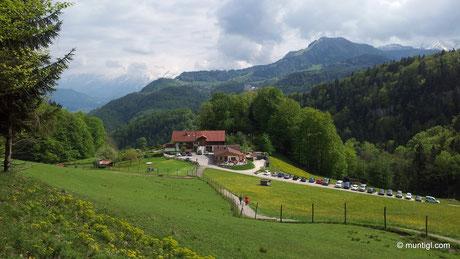 s'Bamstoa im Hintergrund der Dürrnberg