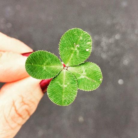 Glück, Glücklichsein, Mentaltraining Wien, Mentale Stärke, Mentaltrainer, Verena Gritsch,