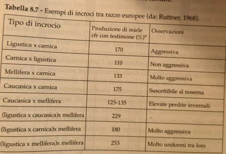 Esempi di ibridi commerciali a 2 e 3 vie  da M. Lodesani - L'ape regina - allevamento e selezione pag 325