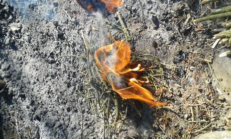 Feuer garantiert anbekommne, Feuer mit nur einem Strechholz entzünden, Waldläufer Feuer, Survival Feuer, Feuersrtufen Bushcraft, Feuer mit dem Fire Steel