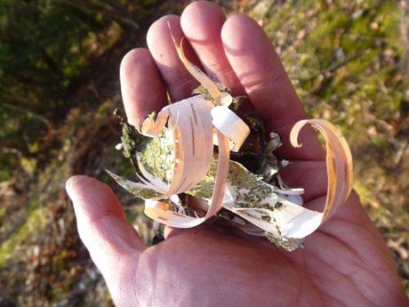 Zundermaterial aus Birke, Birke als Survivalbaum, Birkenrinde nutzen, Birkenrinde zum Fuermachen nutzen.