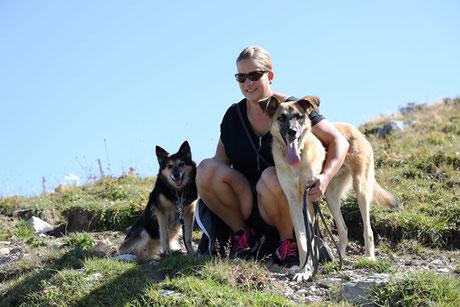 AJ-Hundetraining