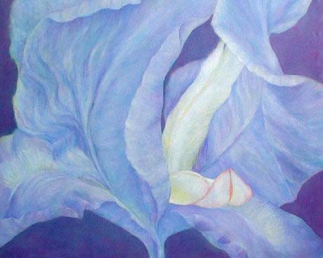 Blaue Iris  Öl auf Leinwand 80x130cm