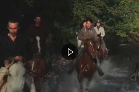 activités de pleine nature : cheval,canoë,parcours aventure avec grotte,escalade,tyrolienne,pont de singe,rappel.