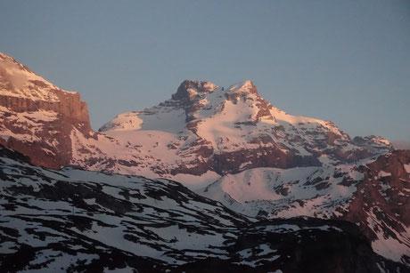 Gross Schärhorn, Skitour, Klausenpass, Chammlialp, Griessgletscher, Chammlilücke, Nordflanke