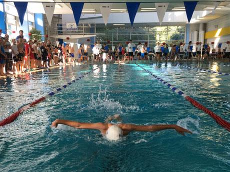Liam Neumann nicht nur im Delphinschwimmen erfolgreich