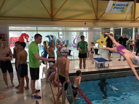 Die Aktiven beim Einschwimmen und beim Üben von Startsprüngen