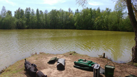 étang de pêche à la carpe no-kill Acrocarpe