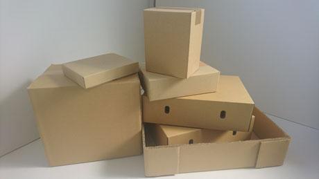 写真:段ボールのサンプル 一般的に使用されているみかん箱(A式)タイプの段ボールから化粧箱まで取り扱いをしています。