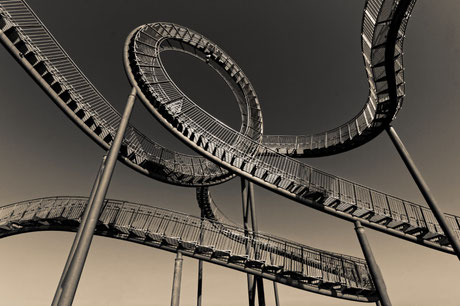 """Tiger and Turtle (7-10373) B+W"" - Copyrigt by Franz Walter"