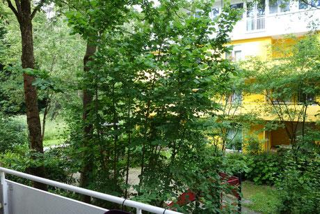 1 Zimmer Wohnung in Johanneskirchen
