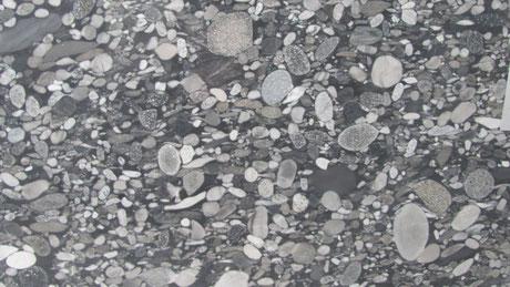 Ein Naturstein namens BlackMarinage mit einer Struktur aus Kugelruden Steinen ( Konglomerat )