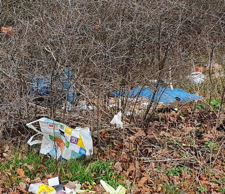 Illegale Müllentsorgung in Salzwedel.