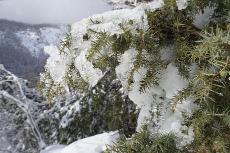 raquette hiver neige briançon serre-chevalier