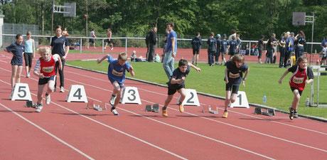 Im jungen Alter die Grundlagen der Leichtathletik lernen