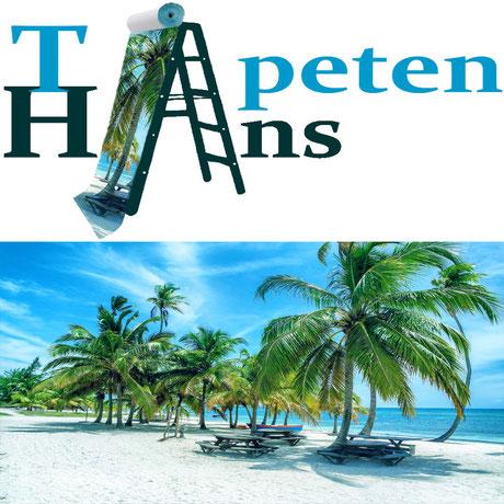 App Tapetenhans