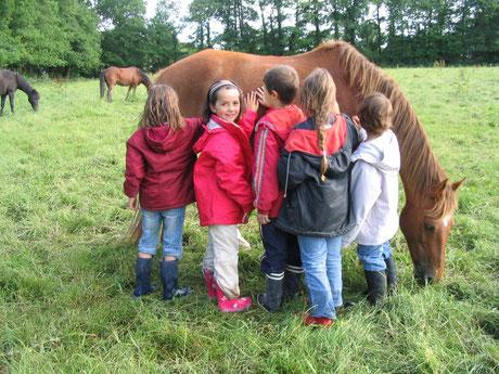 Les enfants ont grand plaisir à approcher les poneys dans le pré.