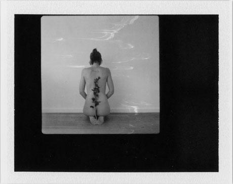 Muladhara | 2017 | Polaroid