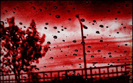 """Das versteht man also unter """"Regenschauer""""..."""