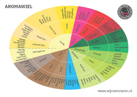 Wijntermen betekenis Primaire Aroma's