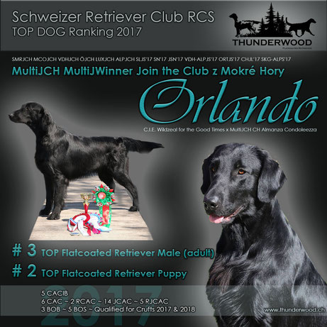 RCS TOP Dog Ranking: Orlando # 3 Male and #2 Junior