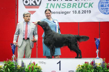 Orlando ist neu Österreichischer Champion*