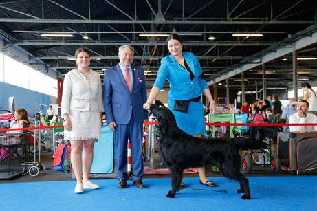 Orlando mit Richter Laurent Pichard und Züchterin Anna Zimova