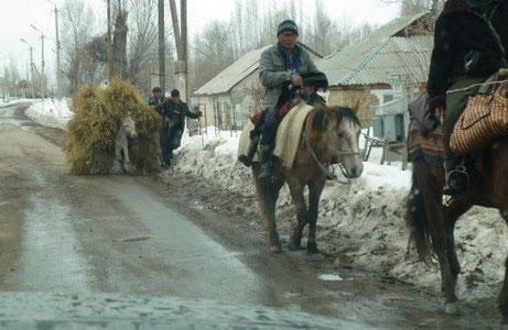 Village farming Central Asia